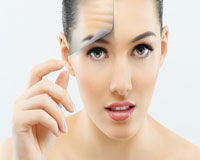 Elastin, Colagen, Ginseng, Glicolic and Hyaluronic Acids