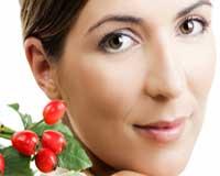Rosehip Oil Cosmetics