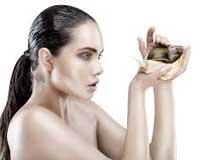 Snail (Escargot) Cosmetics