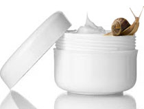 Snail Creams and Lotions