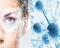 Stem Cell Cosmetics