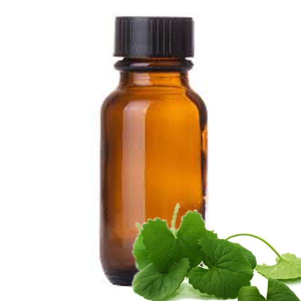 Andes Organics Pure Centella Asiatica (Gotu Kola) Oil, 100 ml