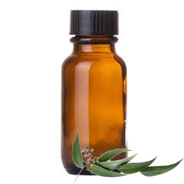 Andes Organics Pure Eucalyptus Oil, 100 ml