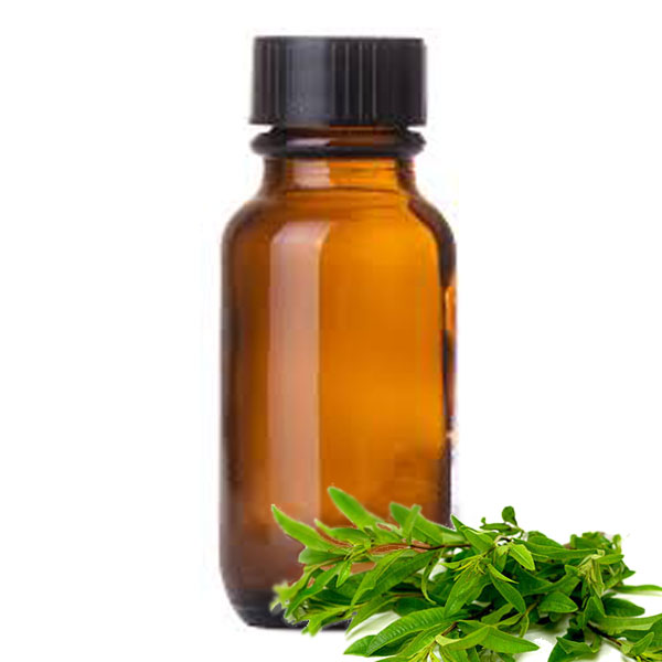 Andes Organics Pure Lemon Verbena Oil, 100 ml