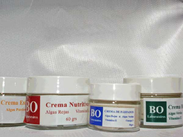 Save on the Complete Facial Treatment: Comprehensive Seaweed Facial Care Combo