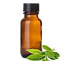 Andes Organics Pure Green Tea Oil, 100 ml