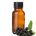 Andes Organics Pure Maqui Oil, 100 ml