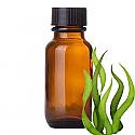 Andes Organics Pure Spirulina Oil, 100 ml
