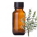 Andes Organics Pure Myrtus Oil, 100 ml