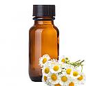 Andes Organics Pure Chamomile Oil, 100 ml