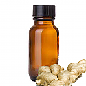 Andes Organics Pure Ginger Oil, 100 ml