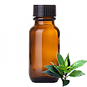 Andes Organics Pure Tea Tree, 100 ml
