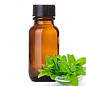 Andes Organics Pure Peppermint Oil, 100 ml