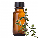 Andes Organics Pure Pennyroyal Oil, 100 ml