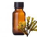 Andes Organics Pure Fucus Oil, 100 ml
